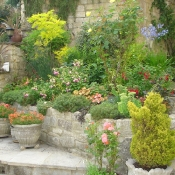 Sue and Ian\'s garden